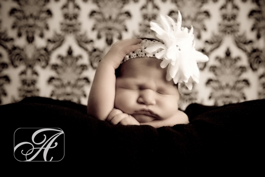 Posted in newborntags visalia newborn photographer